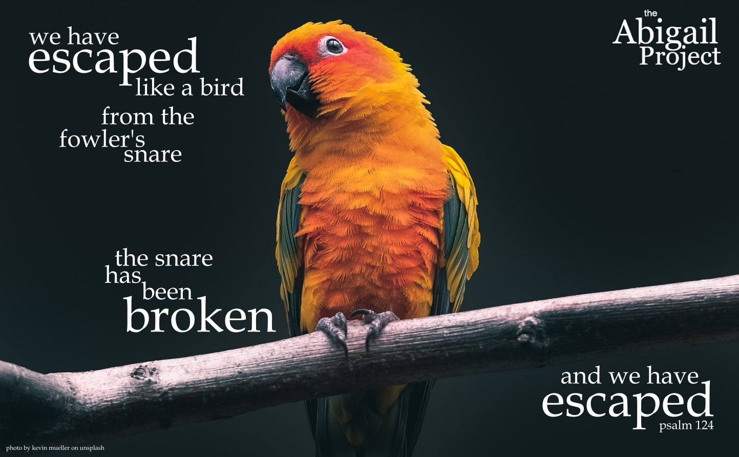 we have escaped like a bird psalm 124