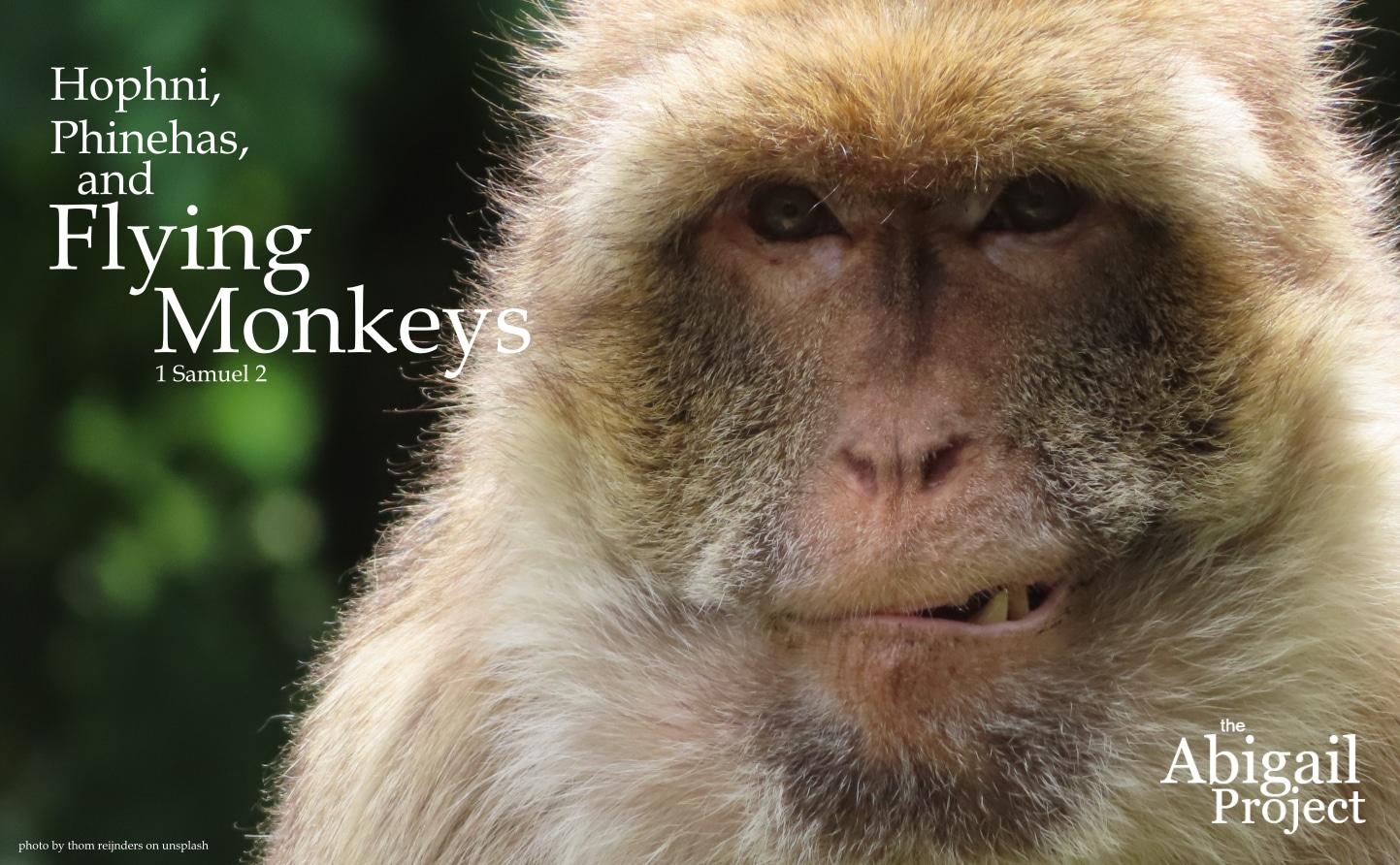 hophni phinehas and flying monkeys