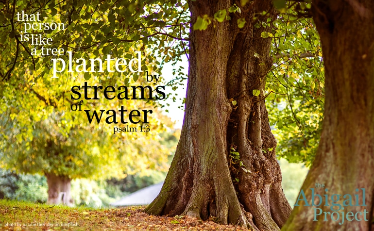 like a tree planted by streams of water - psalm 1-3
