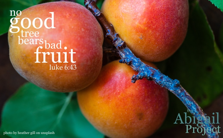 No good tree bears bad fruit